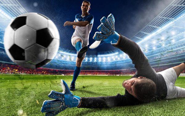 Бесплатные прогнозы на спорт от квалифицированных специалистов